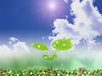 地球のためにみんなの未来のためにできること
